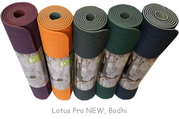 Lotus Pro NEW, Bodhi