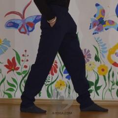 Мужские спортивные штаны ЗИМА, синие