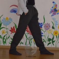 Мужские спортивные штаны ЗИМА, серые