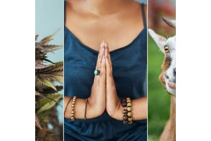 9 незвичайних видів йоги, про існування яких ви навіть не підозрювали