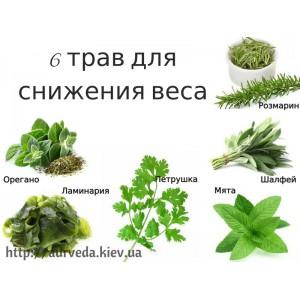 6 трав, які допоможуть знизити вагу>